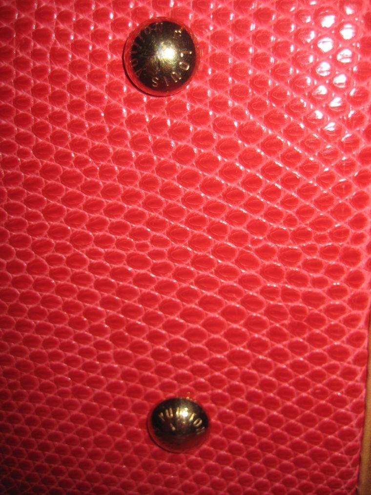 Louis Vuitton Sac Femior Eidechsenleder Cerise -1070