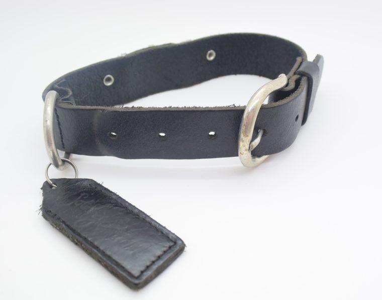Hundehalsband DOG Leder schwarz-12839