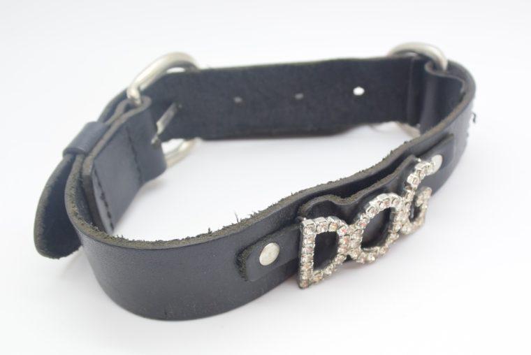 Hundehalsband DOG Leder schwarz-12840